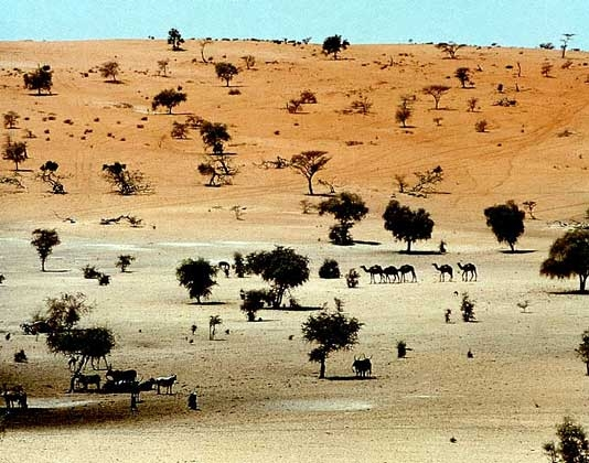 photo05ndjamenachad