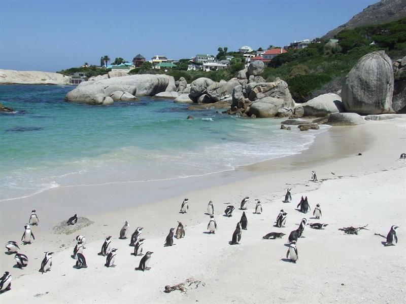 Пляжный отдых в ЮАР