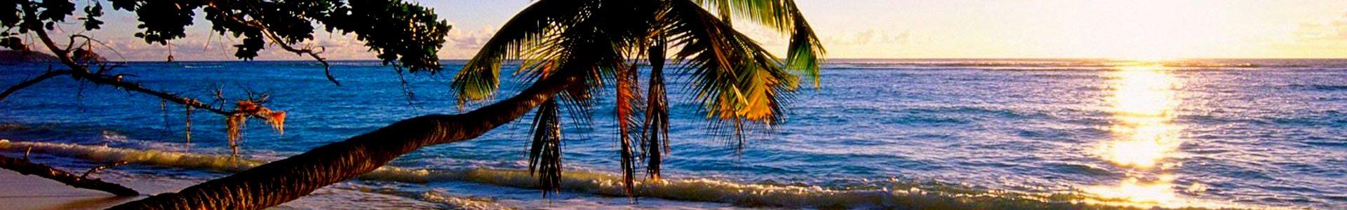 Гоа — райское местечко на берегу Аравийского моря